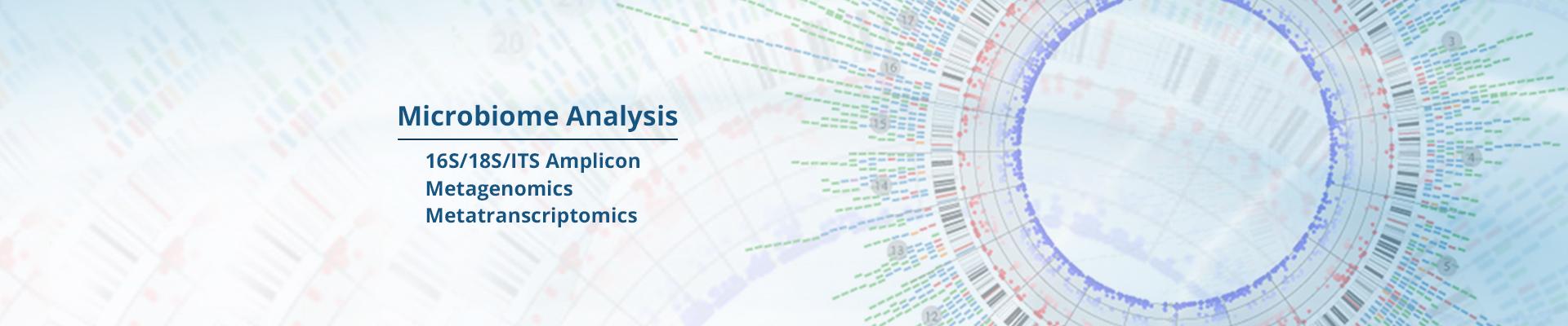 Microbiome-Analysis-V5-1